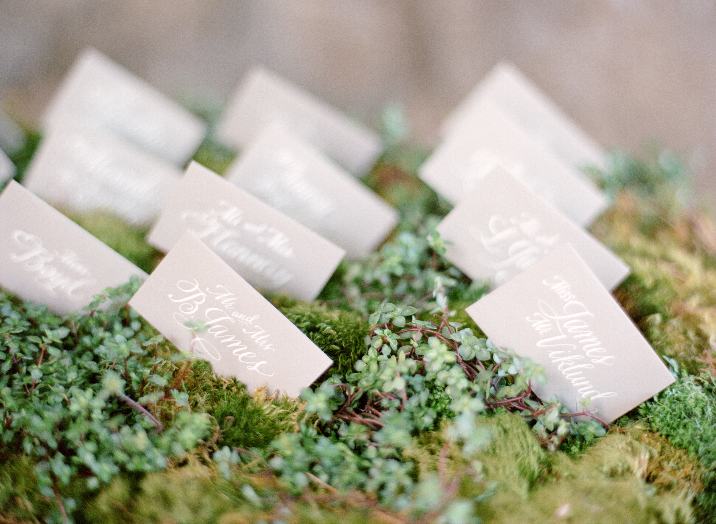 Hand calligraphied place cards are tucked into moss at the entrance of the reception; photo by Sylvie Gil