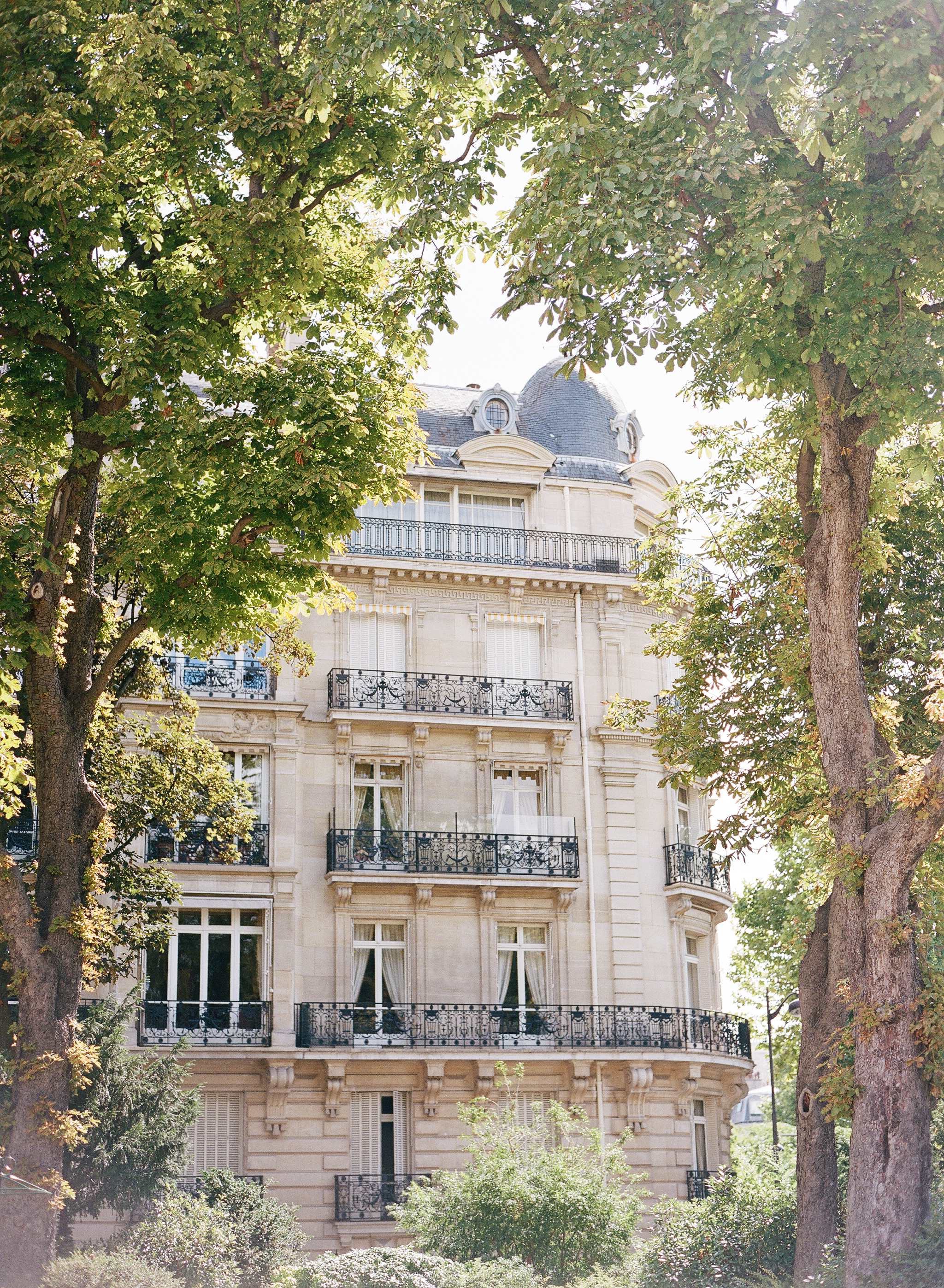 Classic Parisian architecture framed by summer trees; photo by Sylvie Gil