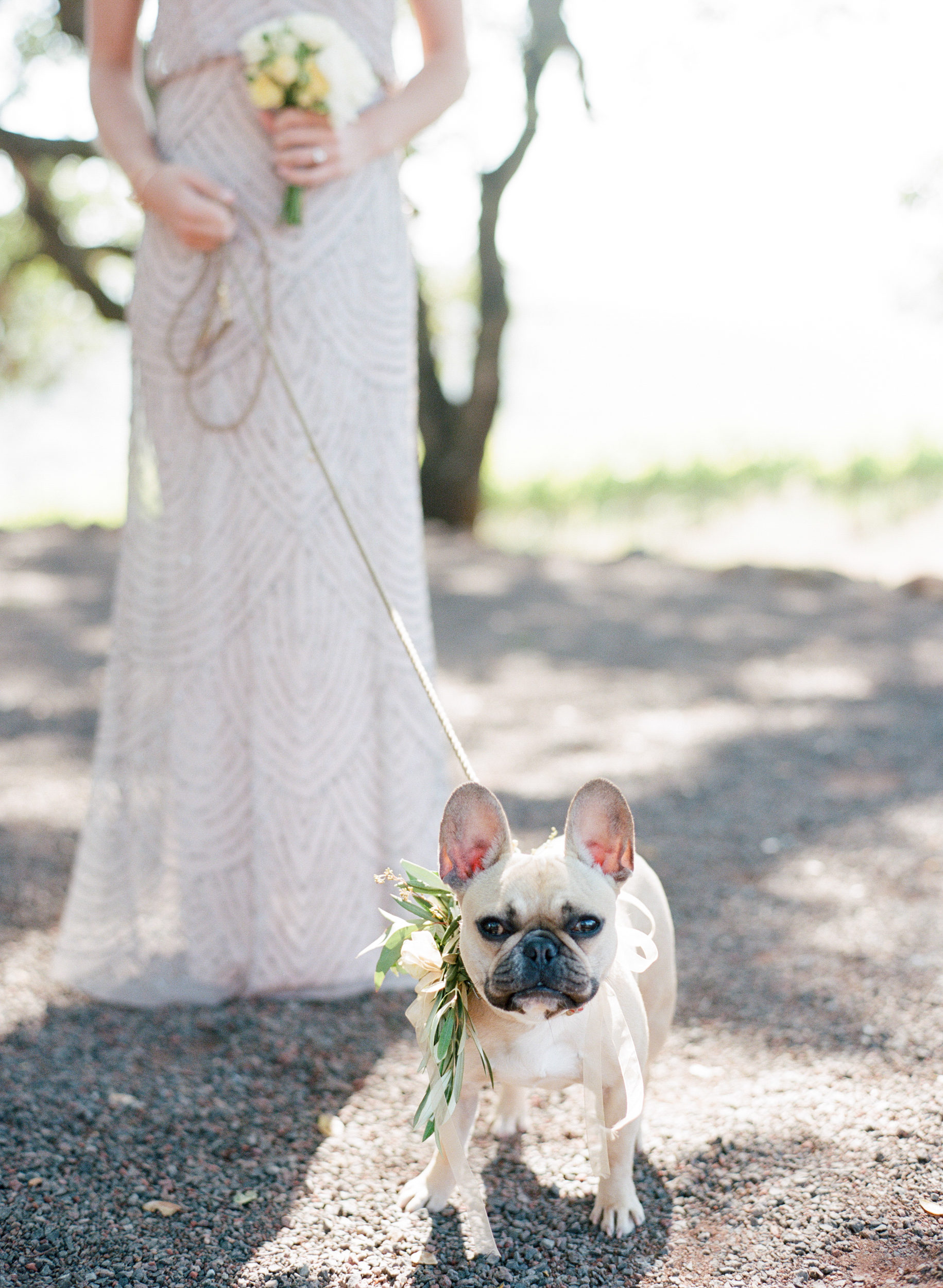 The couple's French bulldog is a part of the ceremony too, wearing a floral, ribbon collar; photo by Sylvie Gil