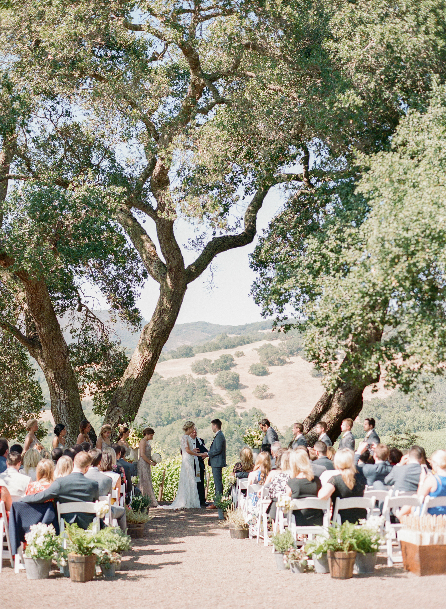 The bride and groom exchange vows under two enormous oaks at the Kunde Estate in Napa; photo by Sylvie Gil