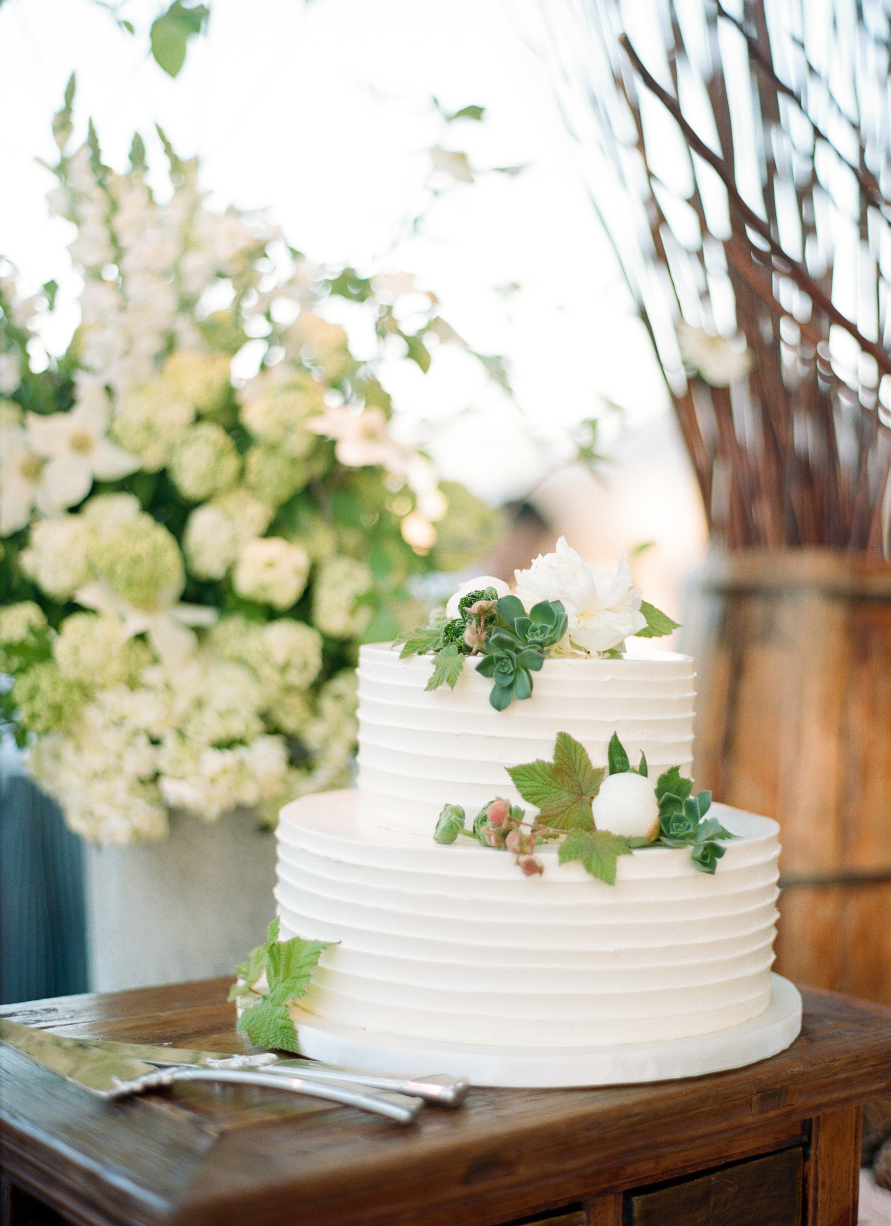 A simple two-tiered cake adorned with peonies and succulents; photo by Sylvie Gil