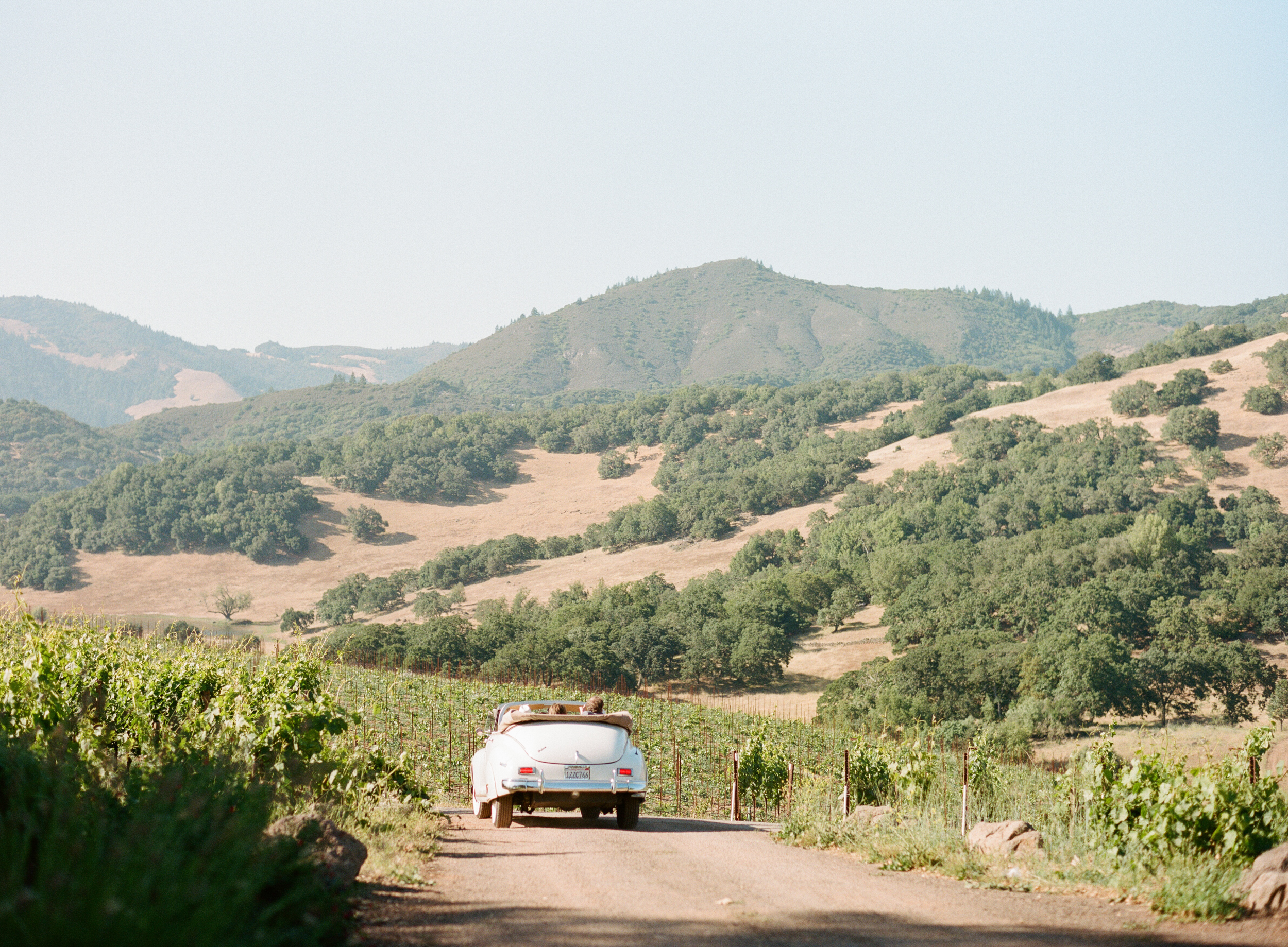 The couple drives off into the sunset after the wedding in the vintage white convertible, through the Kunde Estate in California's wine country; photo by Sylvie Gil