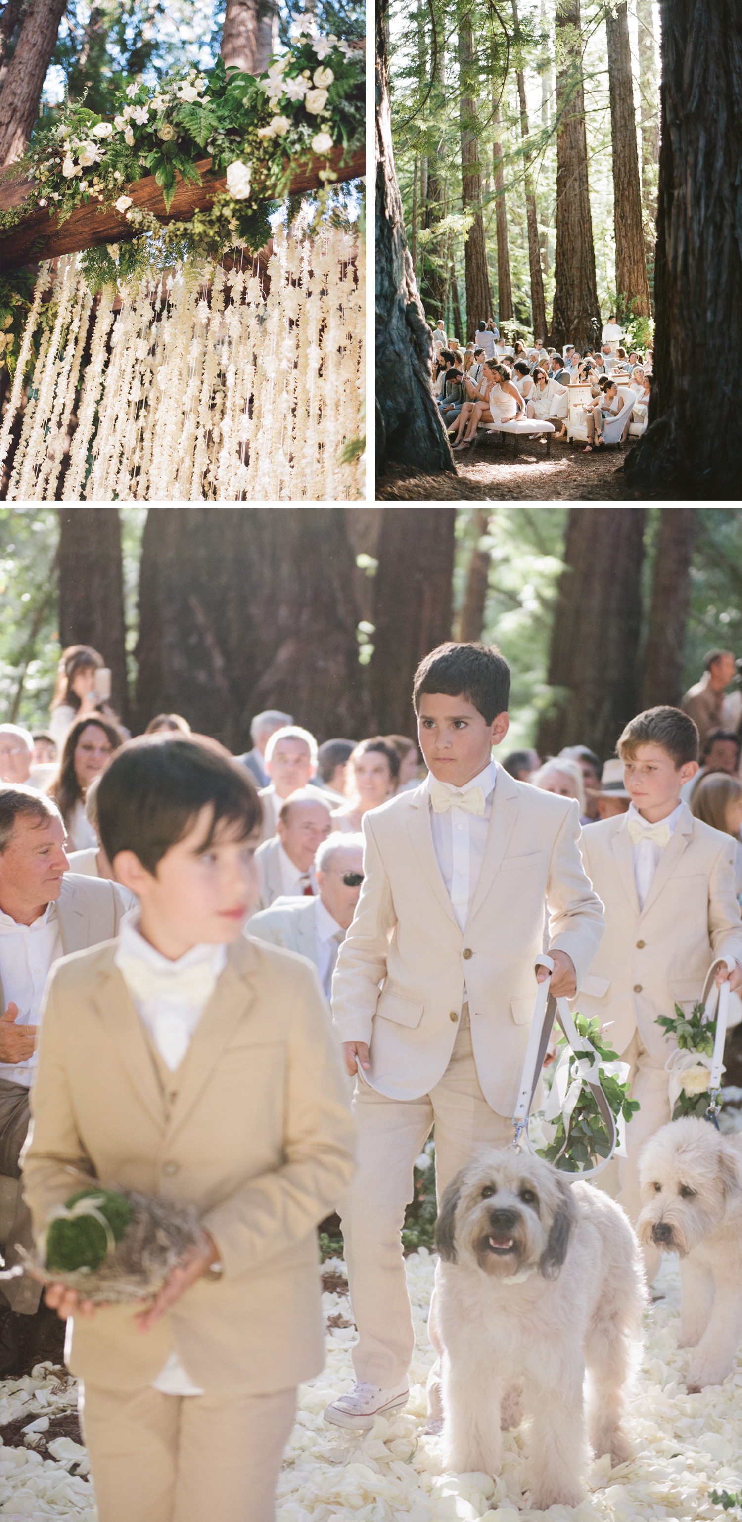 Two labradoodles act as ringbearers in the gorgeous dappled-sunlight ceremony; the arbor is strung with garlands of white florals; photos by Sylvie Gil