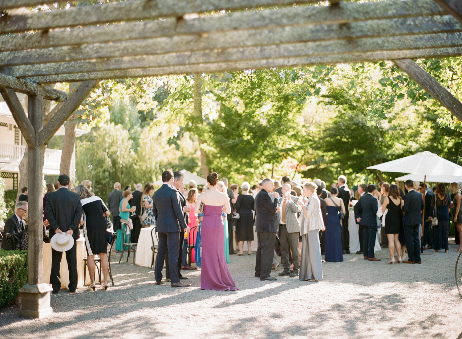 Guests mingle over wedding cocktails at Beaulieu Gardens in St. Helena; Sylvie Gil Photography