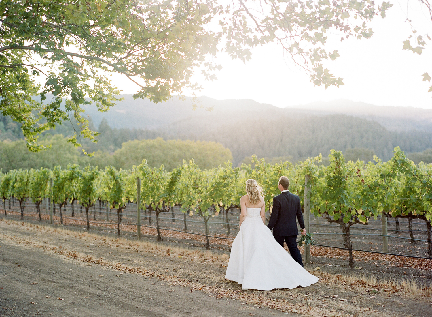 Couple walks into the vineyards surrounding St. Helena after their wedding ceremony; Sylvie Gil Photography