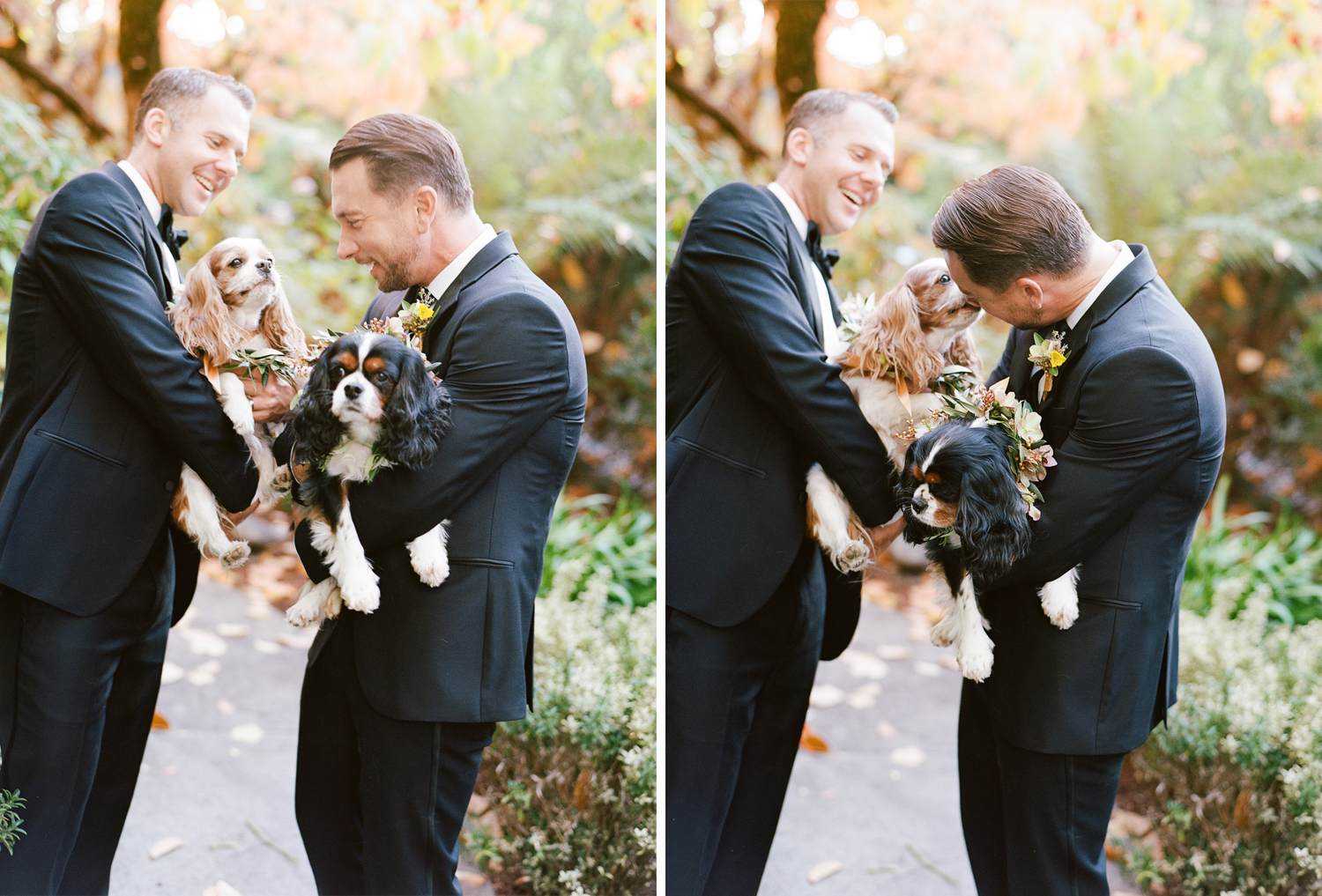 Grooms share a laugh with their two King Charles Spaniels, decked in eucalyptus garlands made by Max Gill; Sylvie Gil Photography