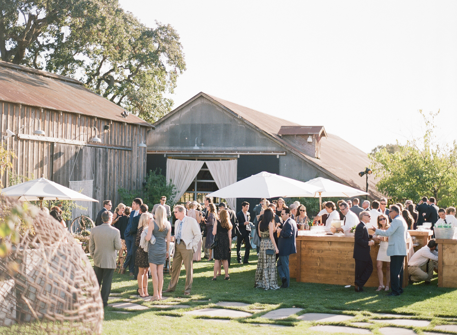 Guests mingle over cocktails outside a rustic bohemian barn reception in Napa Valley; Sylvie Gil Photography