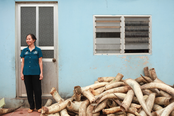 standing with the water buffalo horns in the field before turning them into jewelrypieces.