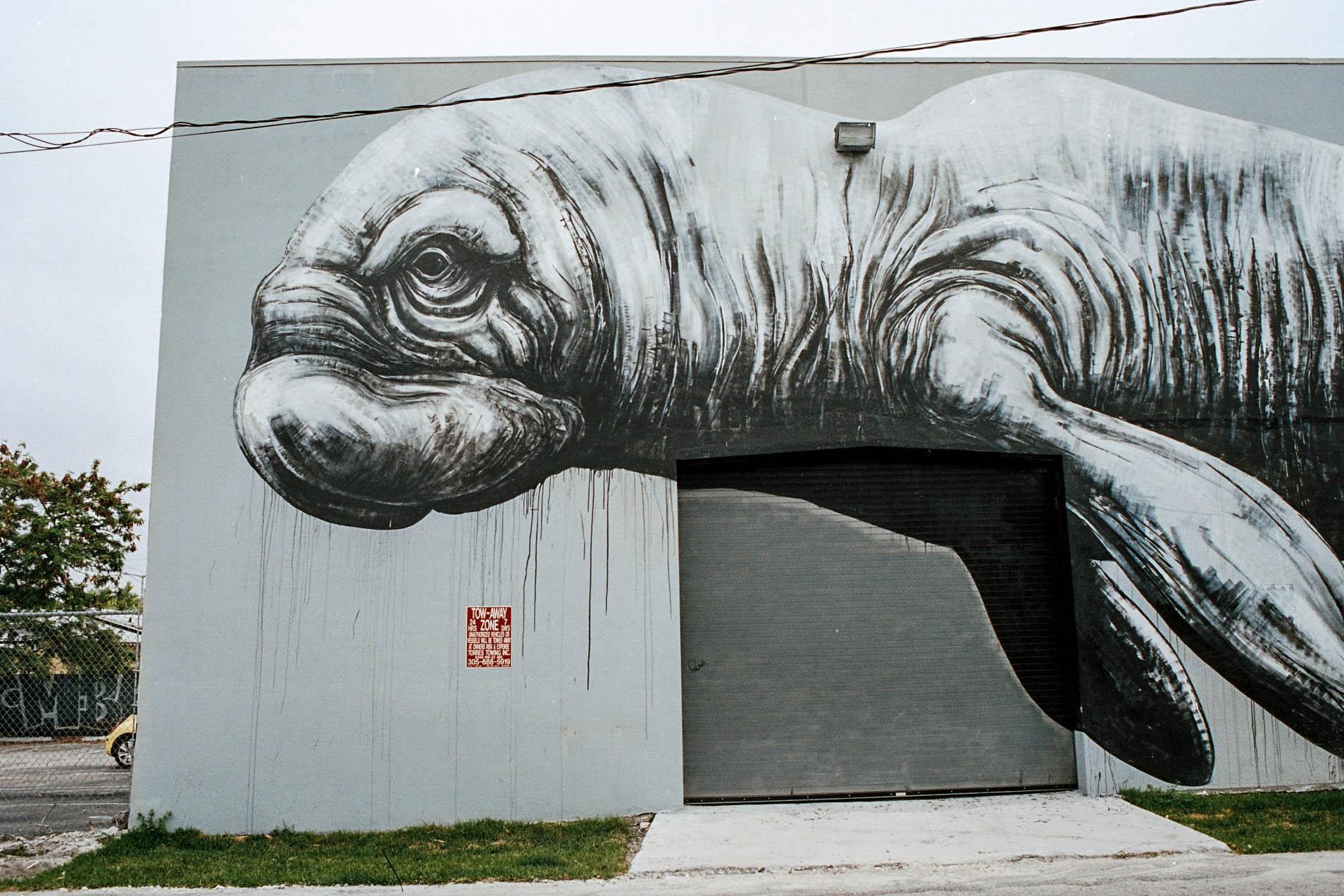 miami_graffiti