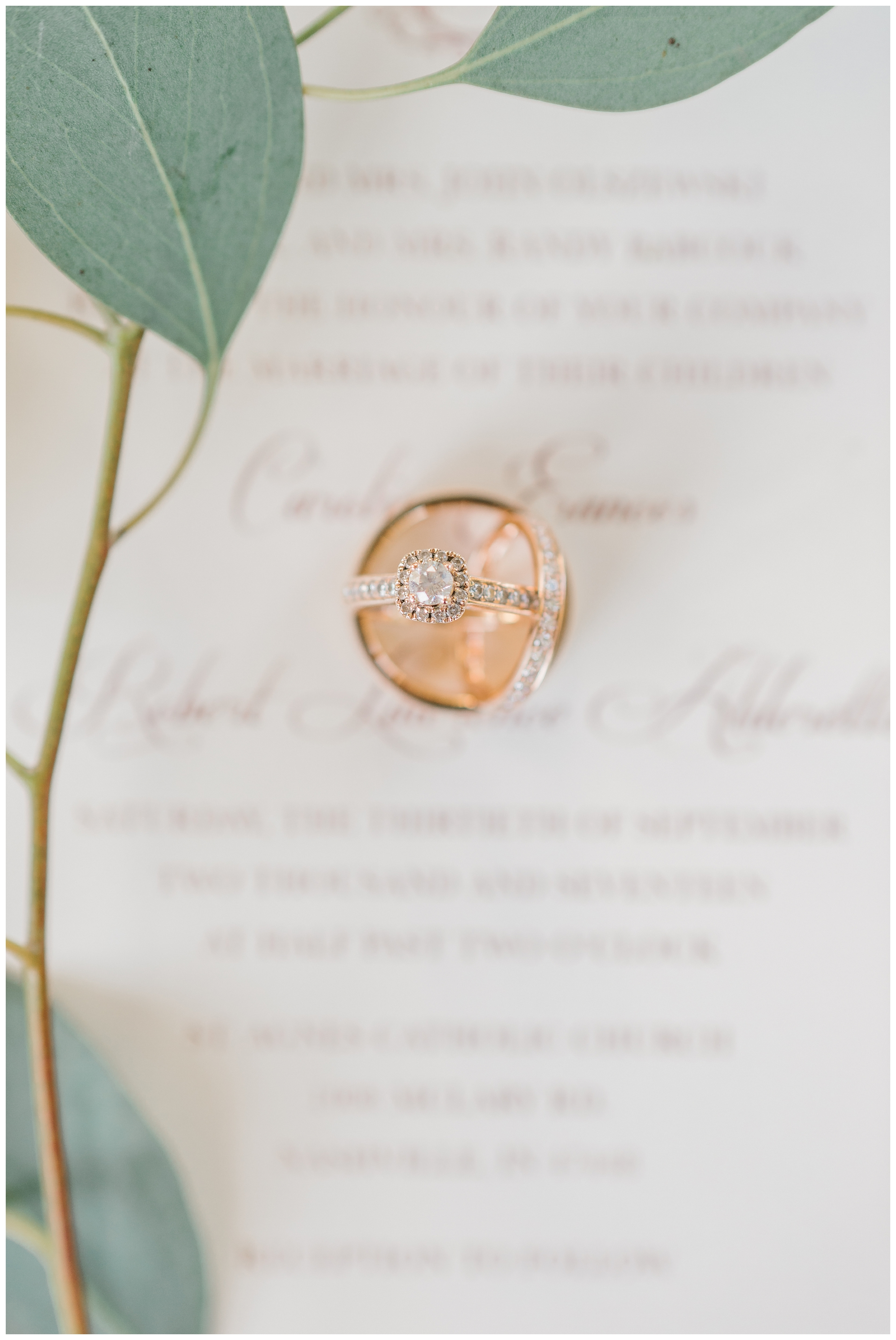 Rebecca_Shehorn_Photography_Indianapolis_Wedding_Photographer_7292.jpg