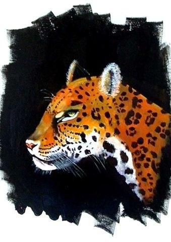 'Leopard'