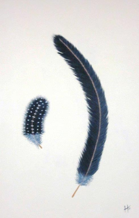 feathers I   SOLD