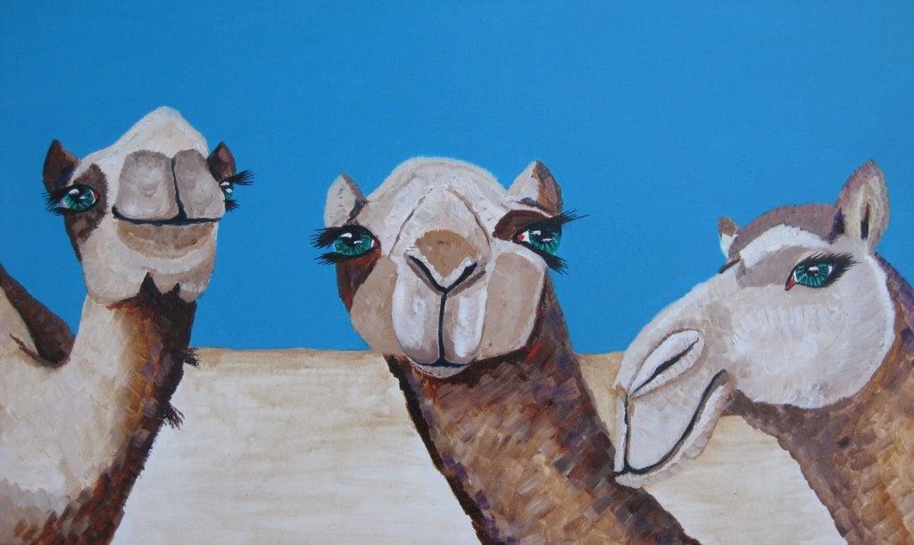 camels 002.jpg