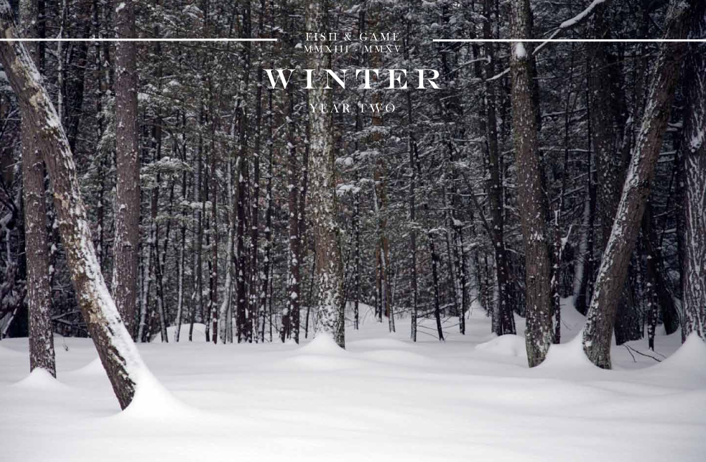 click to view WINTERnewsletter