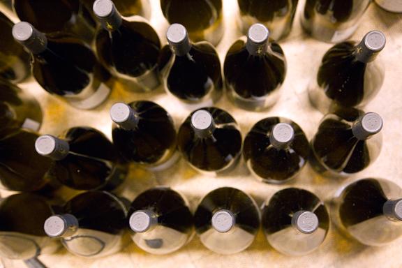 PB-fish-game-bottles.png