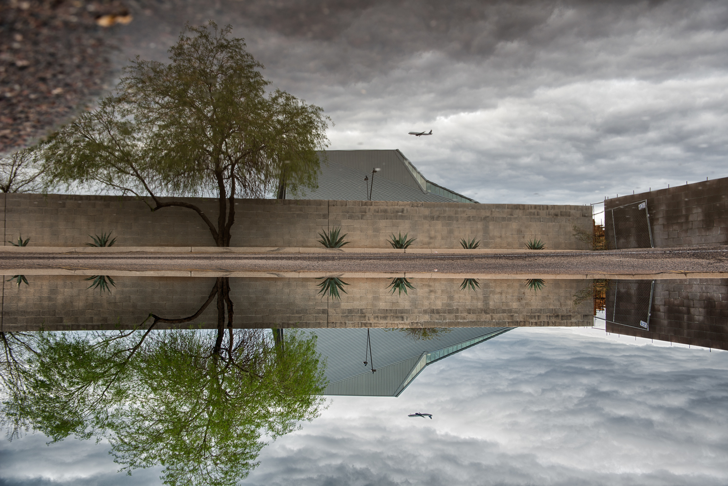 TP_Reflection-30250-Edit.jpg