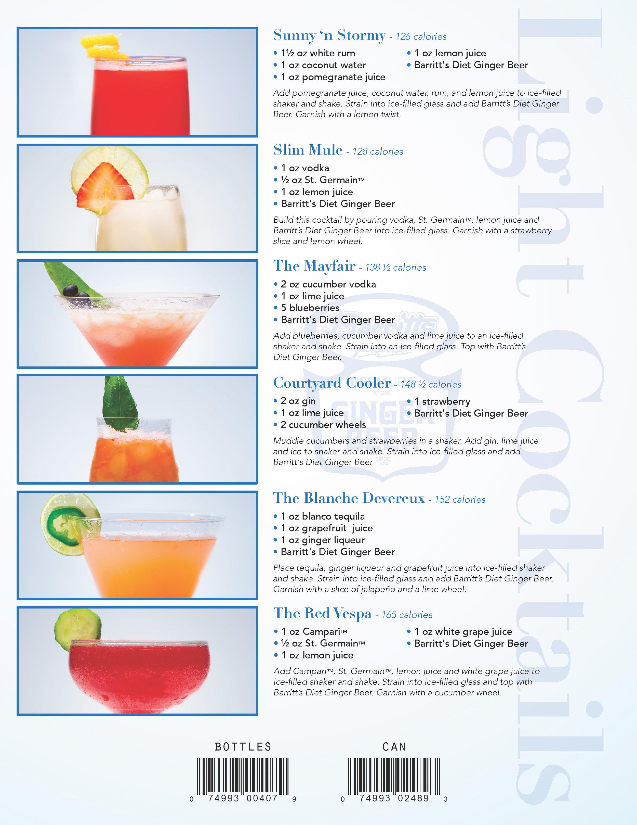 Sell Sheet Version 1_Page_2.jpg