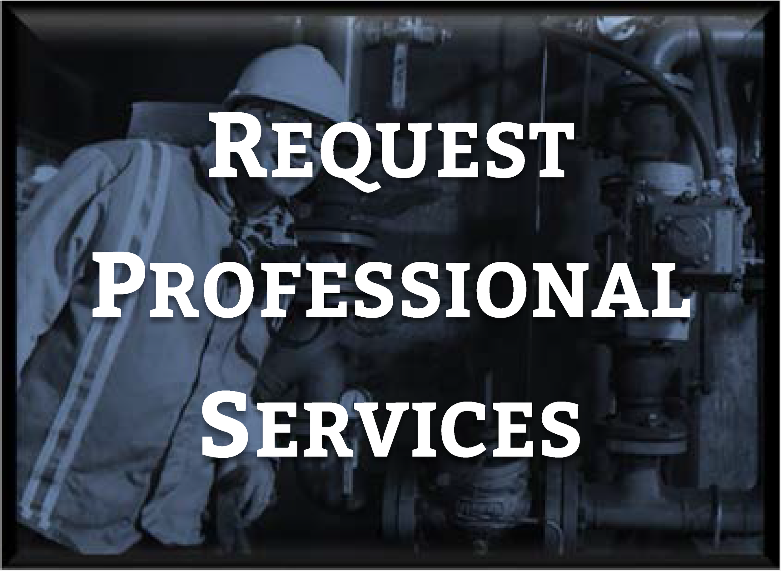 Request Prof Services2.png