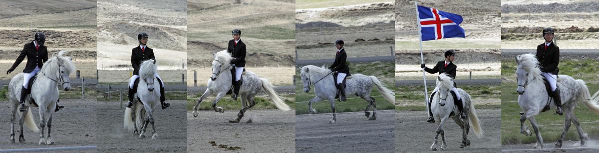 Helstu markmið Knapamerkjanna er að bæta samspil og velferð knapa og hesta