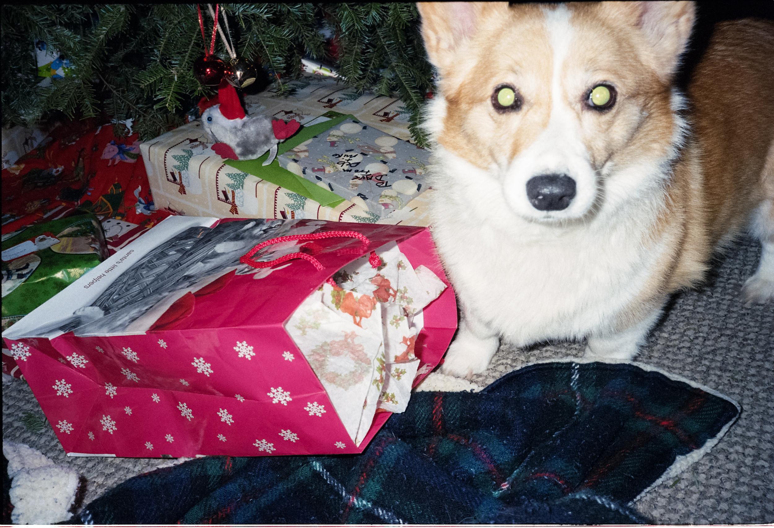 christmas2013017.jpg
