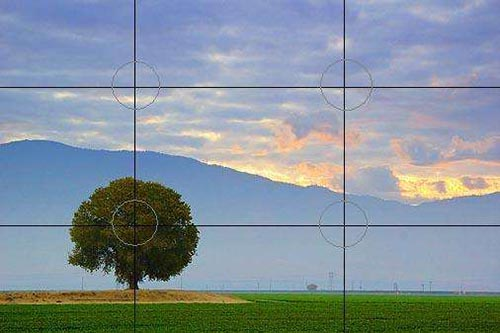 The tree in the photo is set in the lower left anchor point in a rule of thirds shot.
