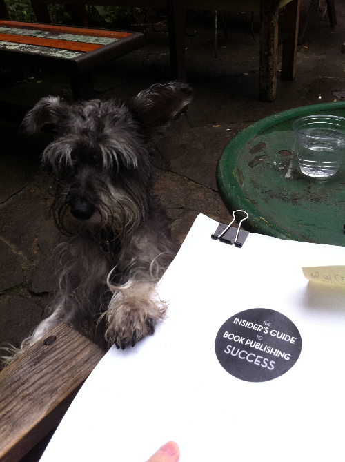 Schlitz the miniature schnauzer helps with the final proofing. It's always good to have an extra set of eyes on your work!