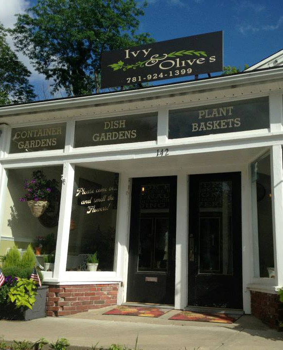 ivyandolives storefront.jpg