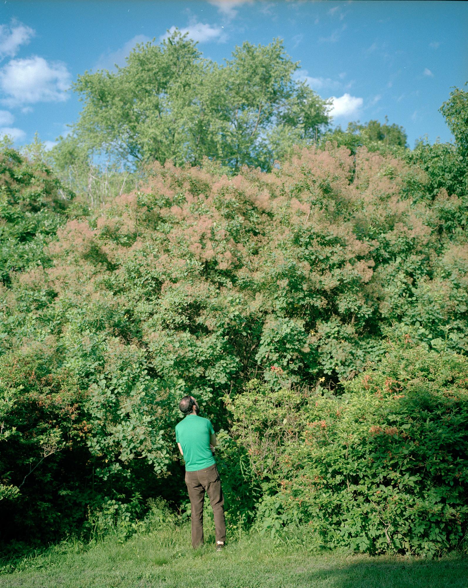 dan in the arboretum sharp.jpg