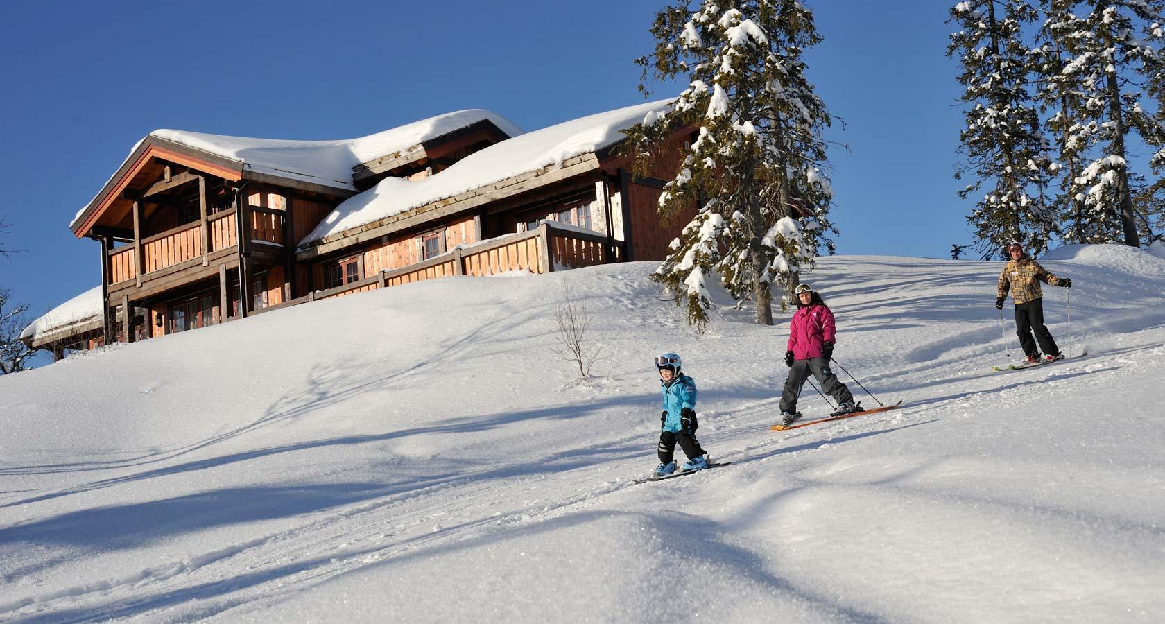skiin.jpg