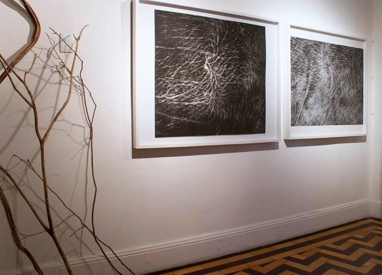 Exposição de Beatriz Carneiro e Paulo Marcos   9/setembro 28/outubro