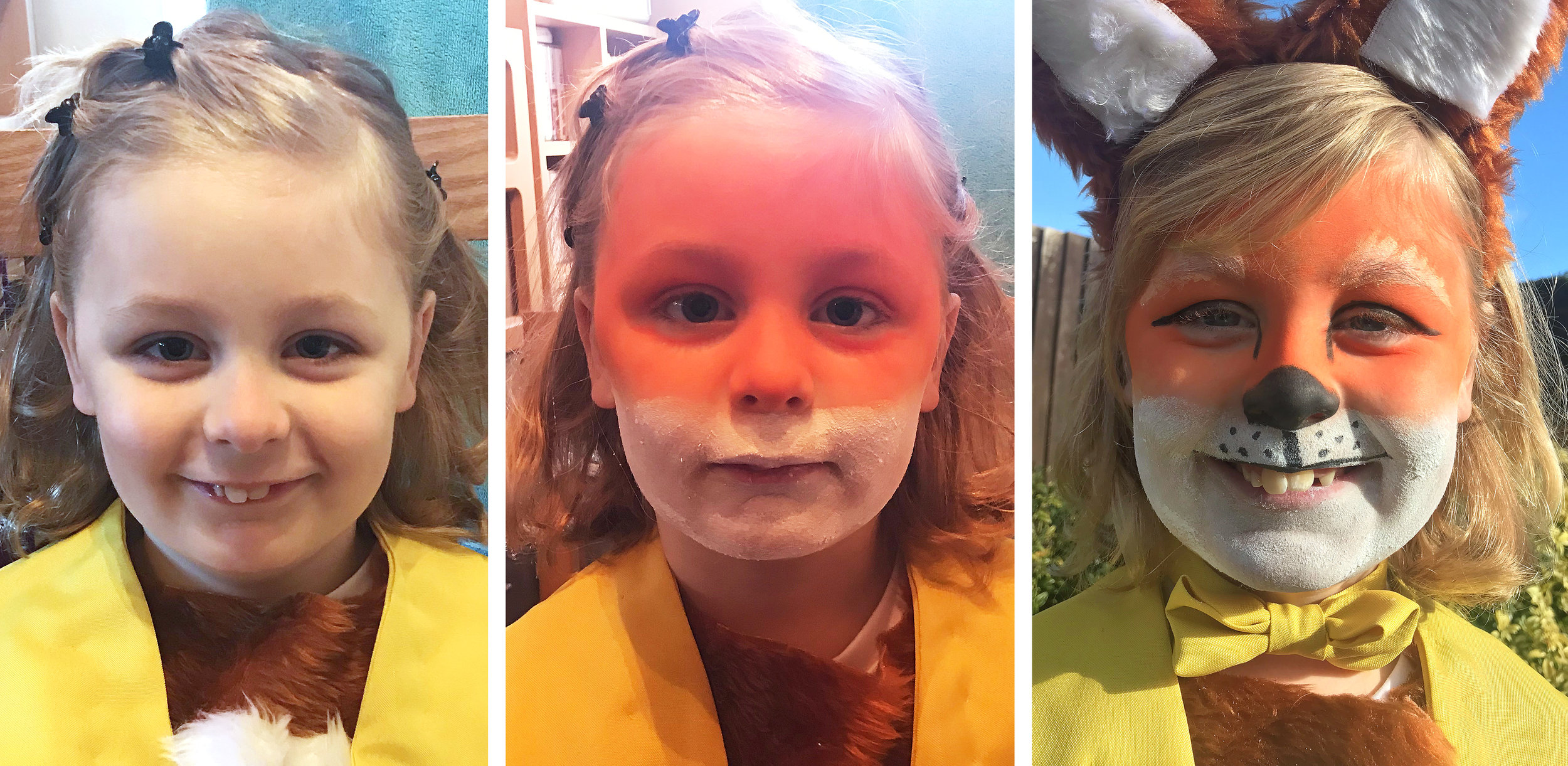 Before, during and after. Bringing Fantastic Mr Fox to life with Snazaroo face paint for World Book Day.