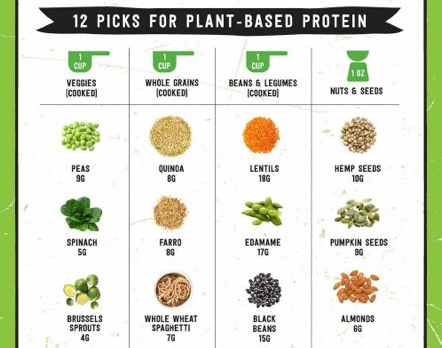 vegetable plant based protein choices crossfit hype Rob thomas weightlifting lifting power olympic boca raton