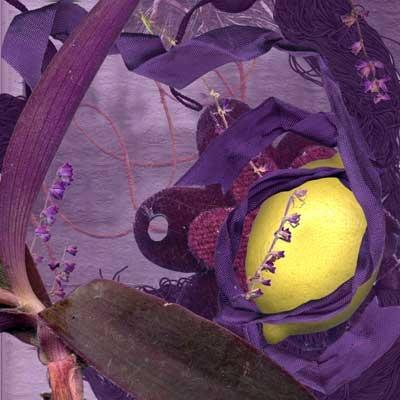 Purple, 2004