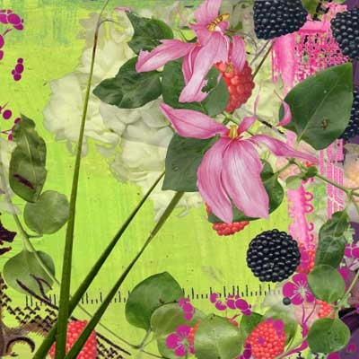 Raspberries, 2005