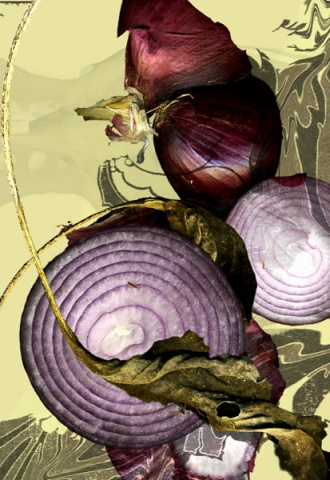 Red Onion, 2007