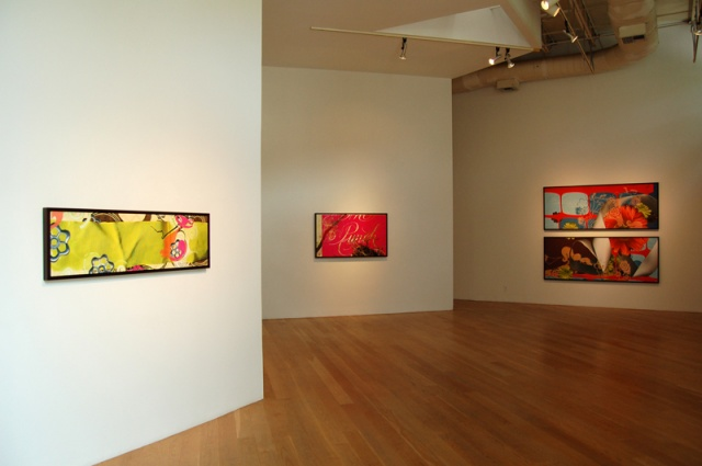 """Installation View,  """"a lotta bit"""" exhibition at Moody Gallery, Houston, TX 2007"""