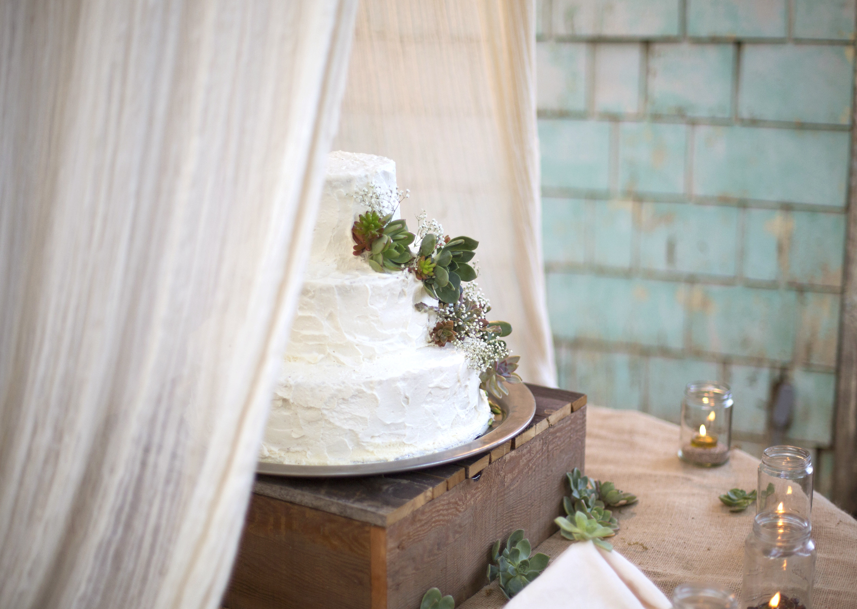 rustic succulent wedding cake