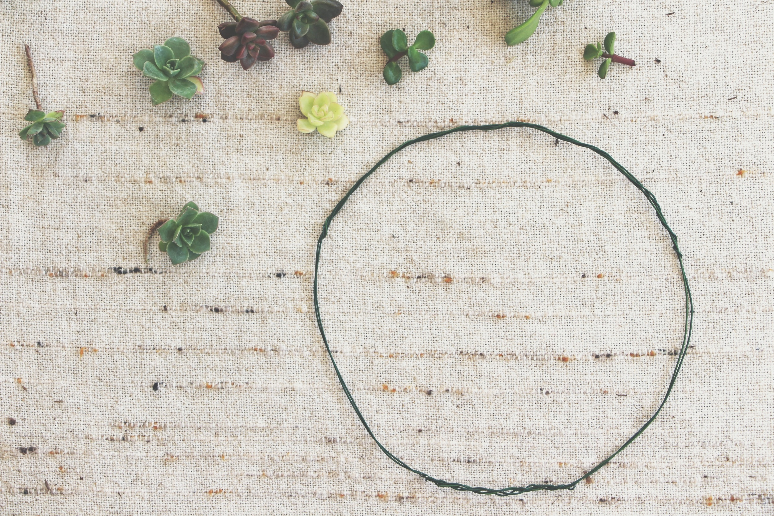 diy succulent crown via needles + leaves