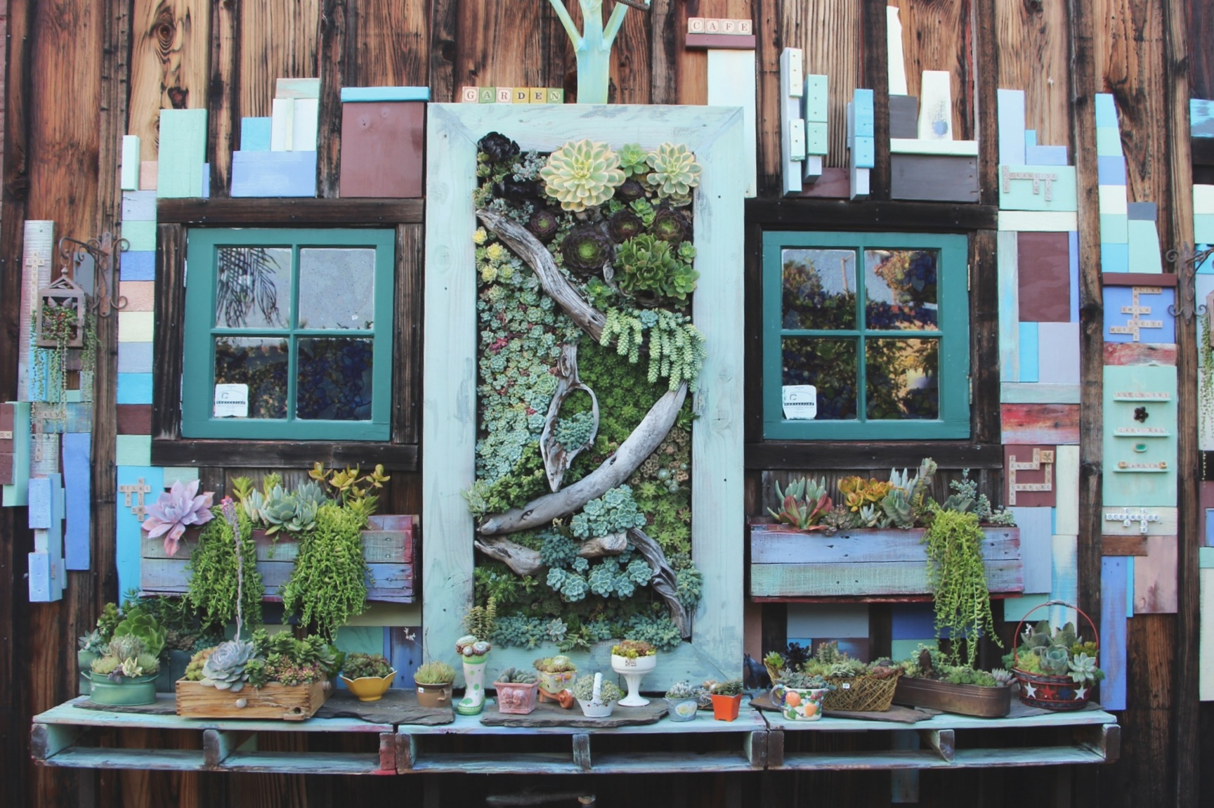 This vertical frame succulent wall was voted best plant art by San Diego Magazine, August 2013 issue.