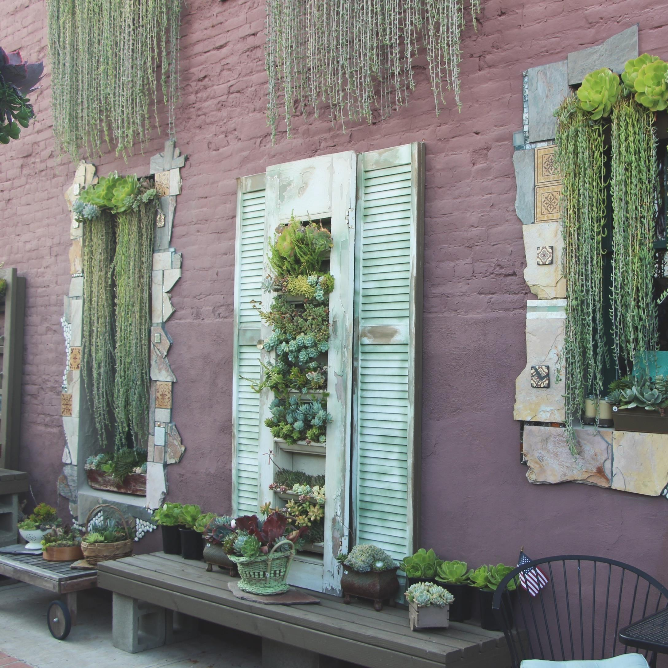 Succulent Cafe Oceanside: A Living Masterpiece