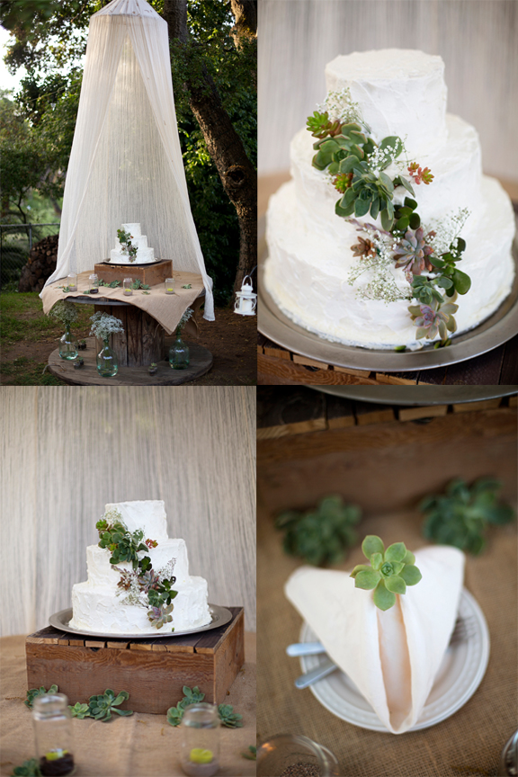 succulents on a wedding cake. vintage rustic wedding decor flowers succulent wedding photography