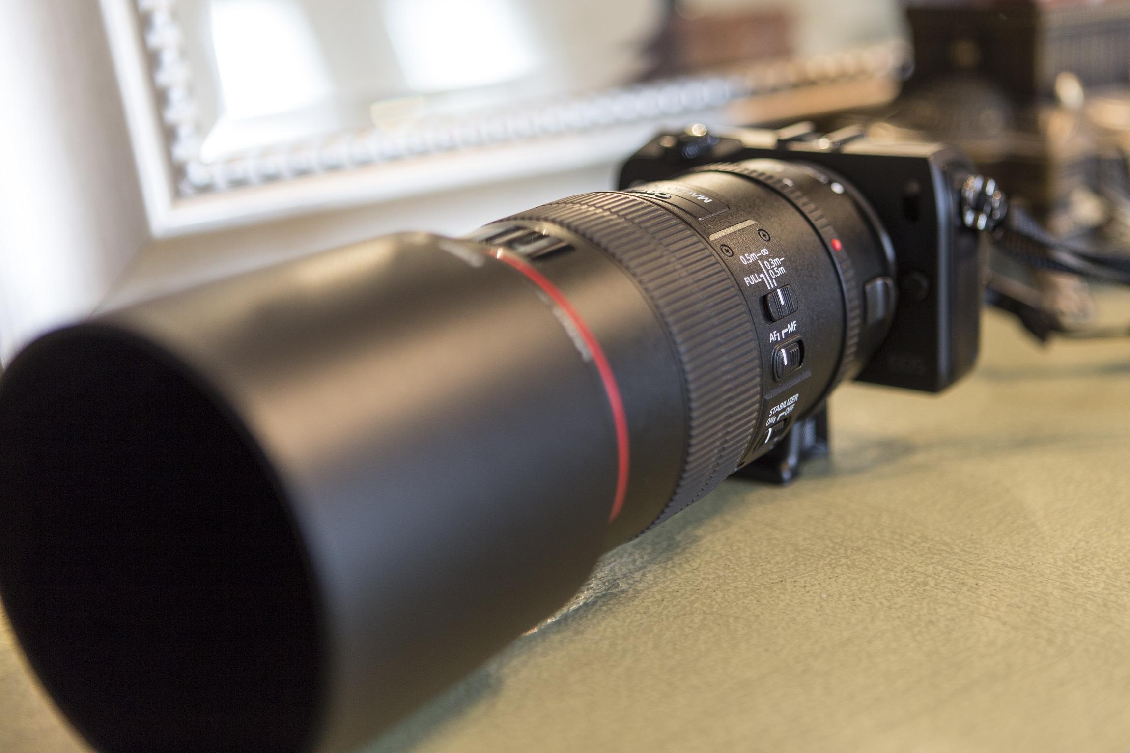 EOS-M with 100mm Macro-5.jpg