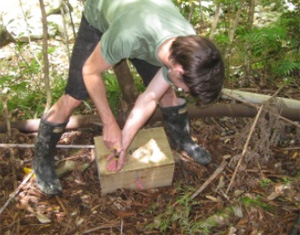 Stu Barr checks a DoC200 trap before setting