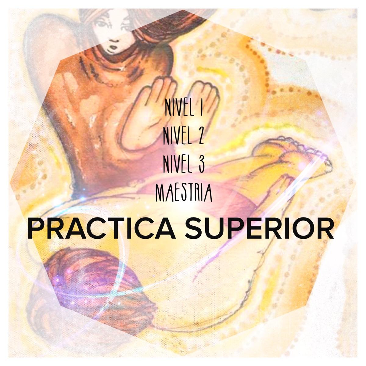 Practica Superior -Reikitime