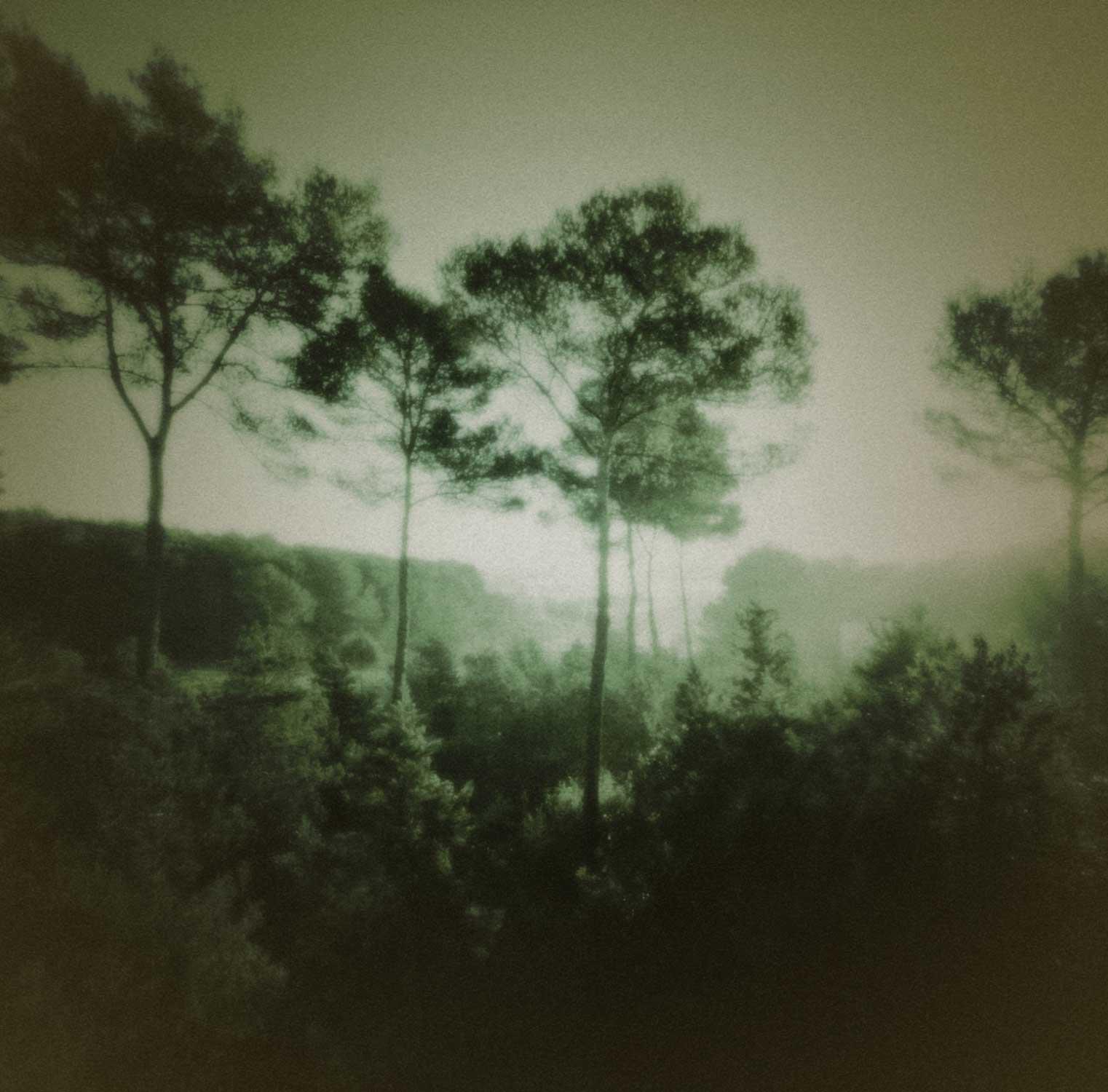 Ibiza dream-09.jpg
