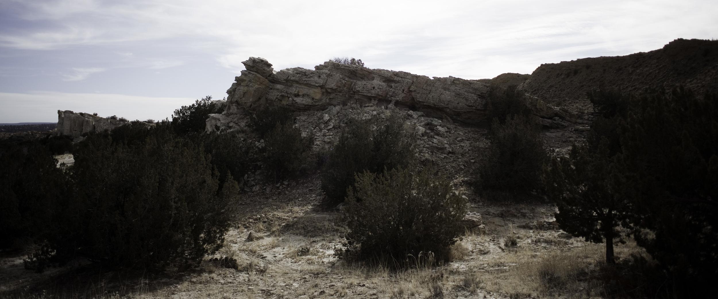 More wilderness in Zia Pueblo