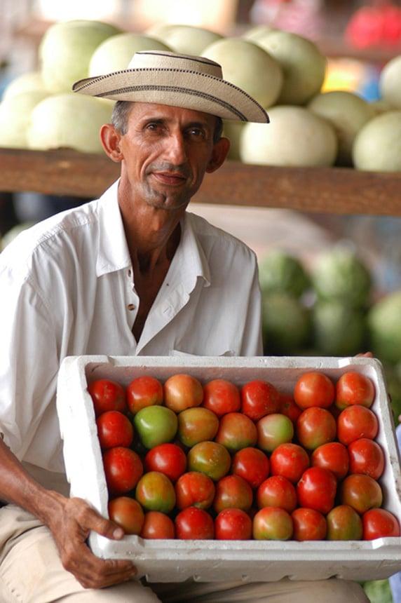 Tomatoguy.jpg