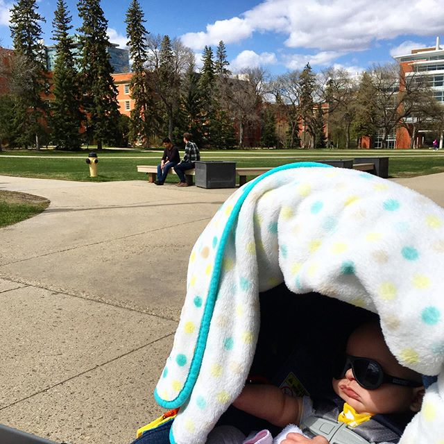 Hitting up that alma mater. @ualberta #university #oldstompinggrounds #quad #alberta