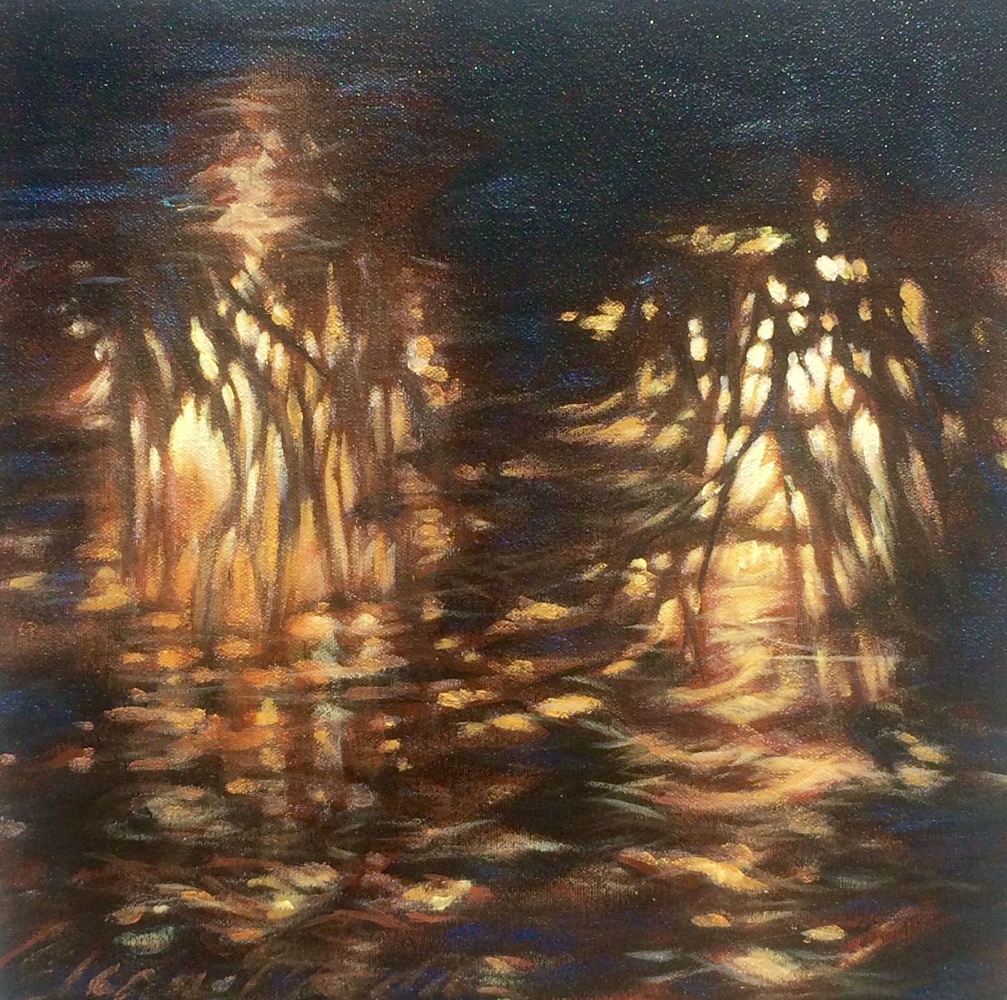 Marsh Shadows 12x12""