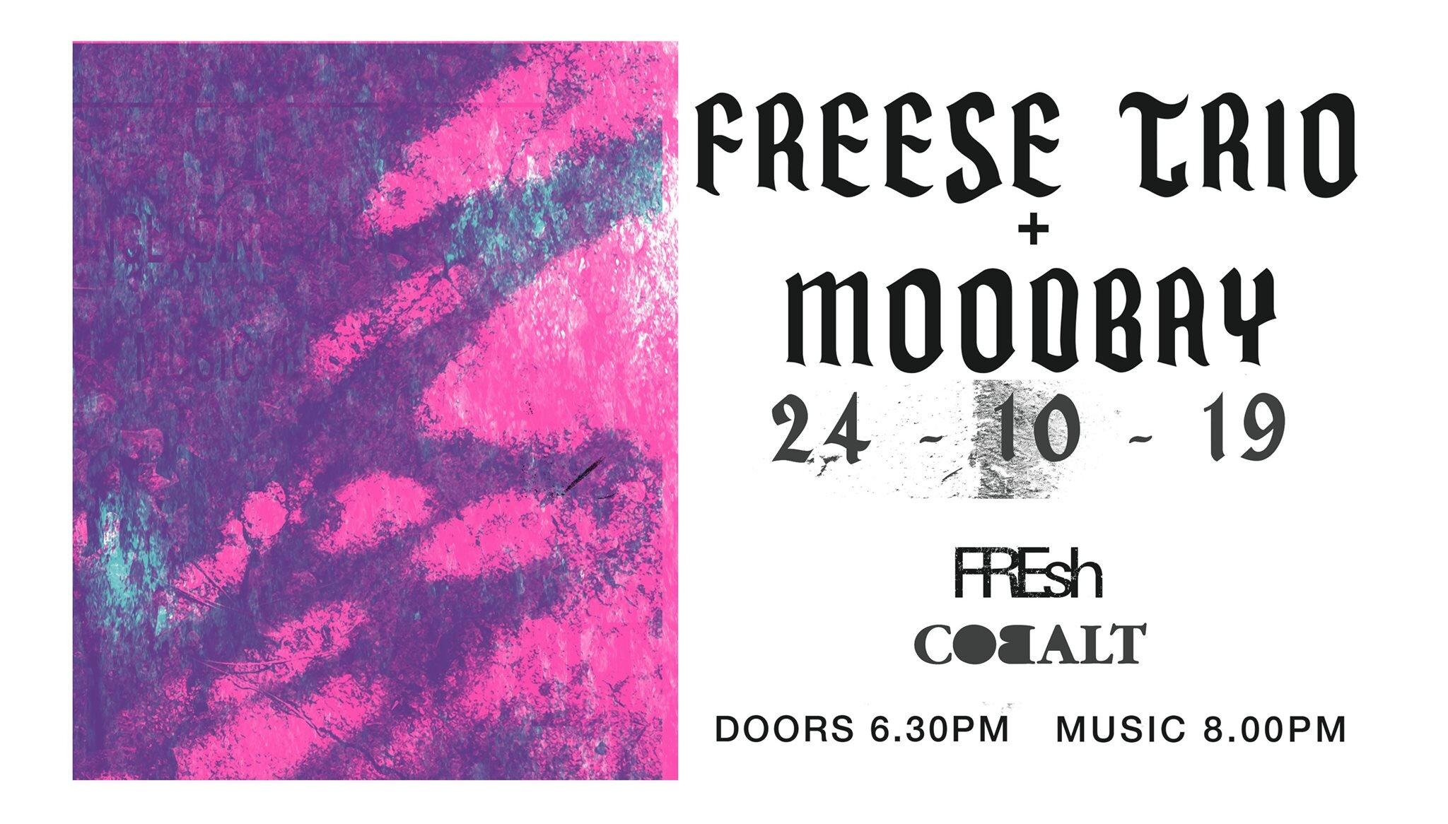 fresh freese.jpg